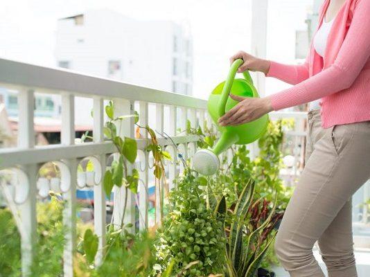 Legge di Bilancio, bonus verde per chi ristruttura terrazzi e giardini
