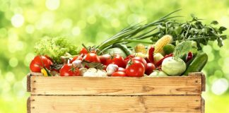 alimentazione bio